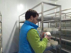 quesero de la quesería artesanal El Cabriteru, afinando quesos