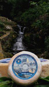 Asturias naturaleza y Queso azul de El Cabriteru