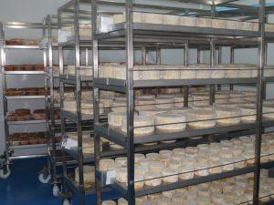 cava de maduración de la quesería artesanal El Cabriteru