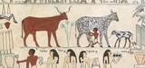 Representación de ordeño de animales en el Antiguo Egipto