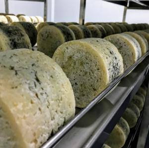 cava de maduración quesos azules de El Cabriteru