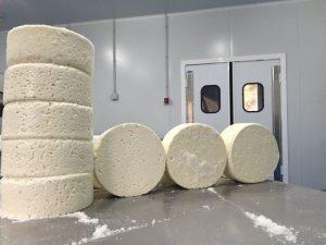 quesos recién desmoldados