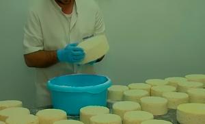 quesos salados a mano uno a uno