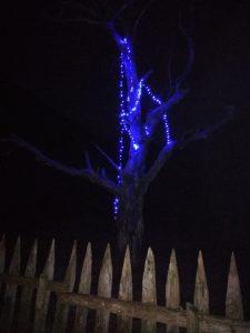 quesería El Cabriteru árbol azul Asturias