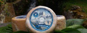 queso azul leche cruda de cabra Arenas de Cabrales