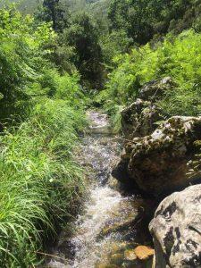 naturaleza Asturias río quesería artesanal El Cabriteru