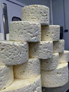 quesos El Cabriteru recién moldeados